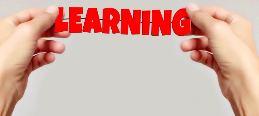 Learn a Framework not aLanguage
